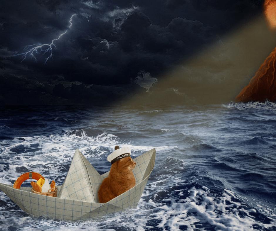 l'Estran Saint Briac - chef d'entreprise dans la tempête